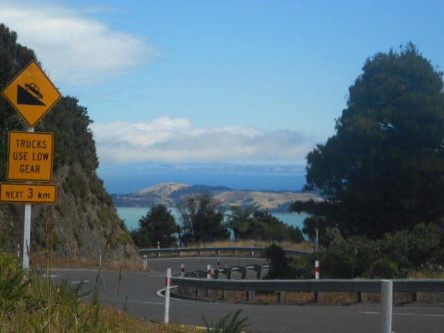 NZ north 012
