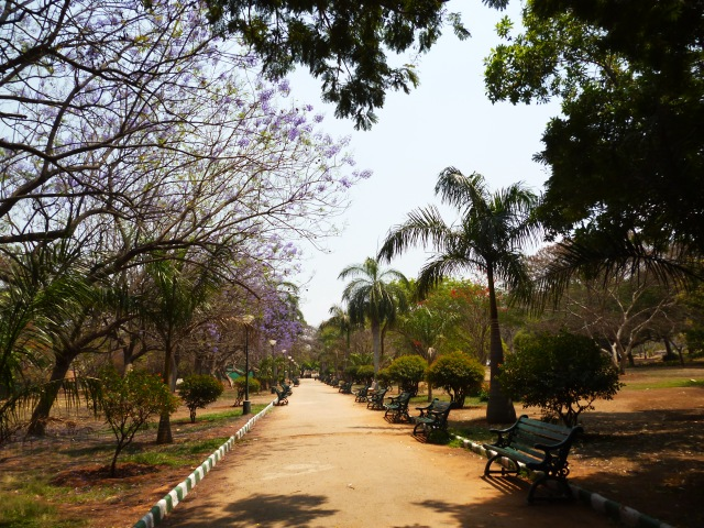 Bangalore 015