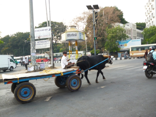 Bangalore 028