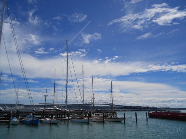 NZ north 703