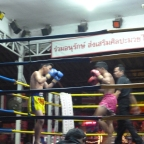 Muay Thai in Chiang Mai with the Worst Tour Guide Ever