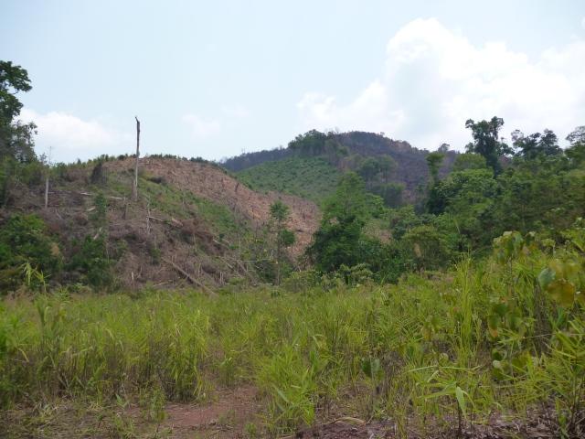 Laos 003