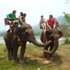 A Shitty Day of Elephant Riding in Luang Prabang