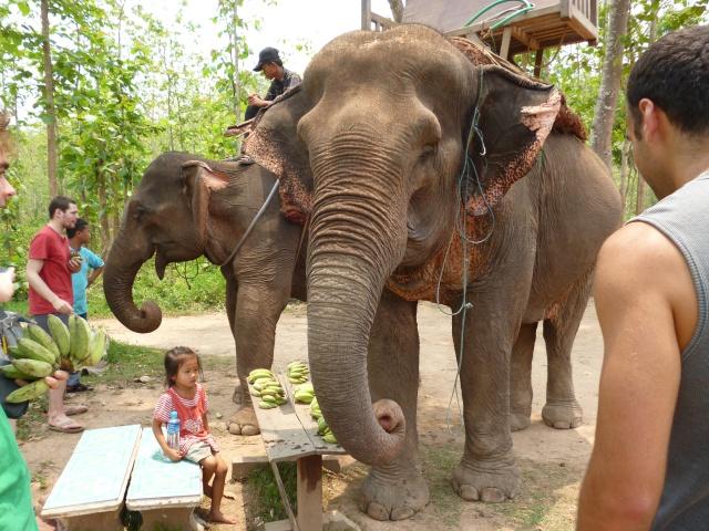 Laos 151